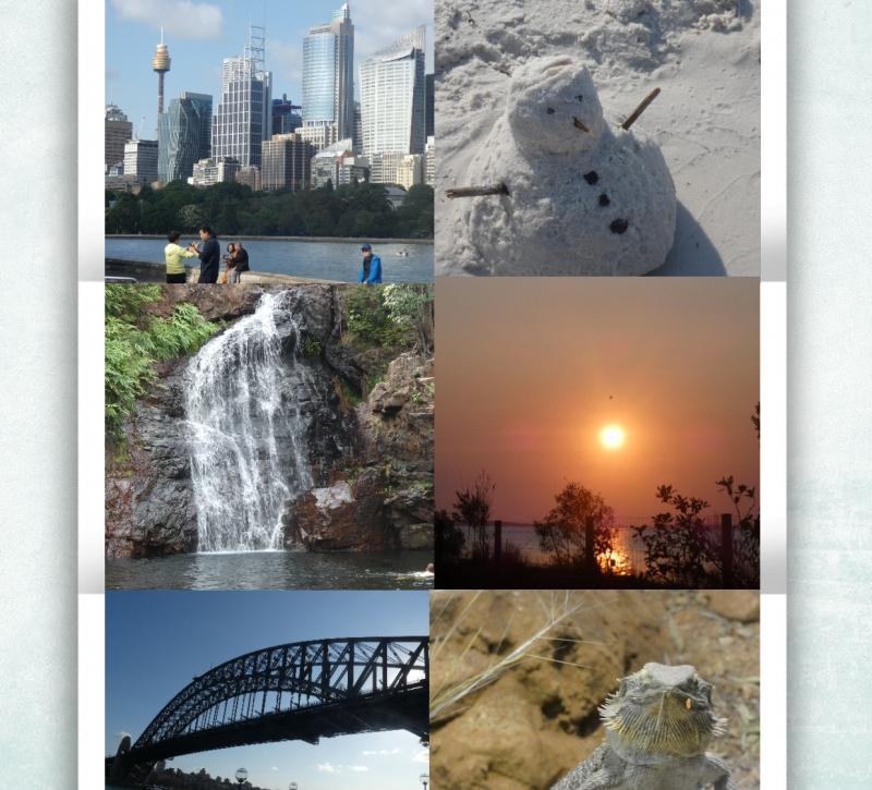 Australien Collage_01.02.20 gepostet